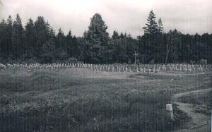 Stalag IA Stablack, cmentarz, foto od Barbary Trojanek ze Zbąszynia